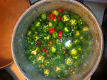 Canning Jalapeno Rings