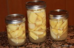 Canning Apple Slices Raw Pack with Honey